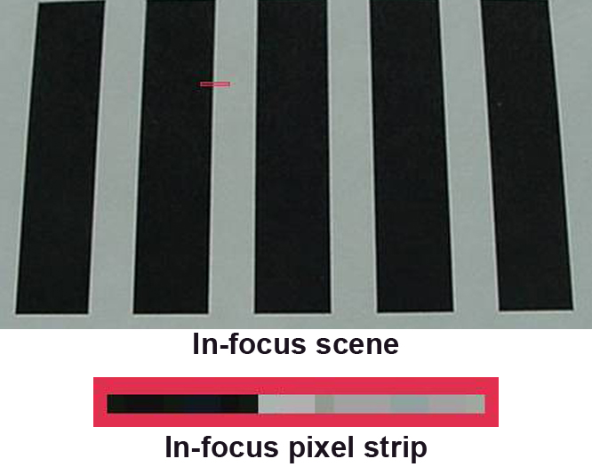 001-In Focus Scene.jpg