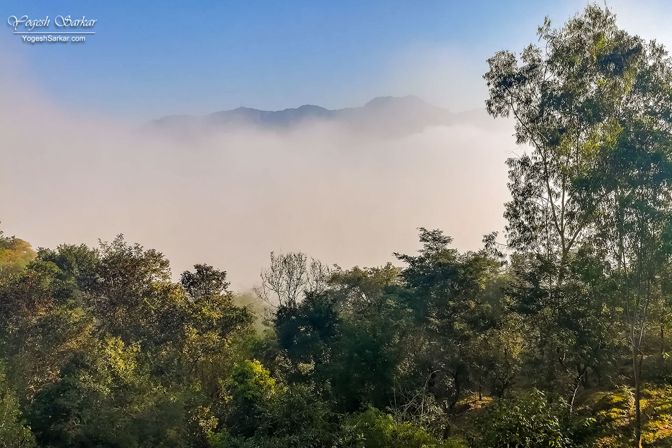 06-foggy-mountains.jpg