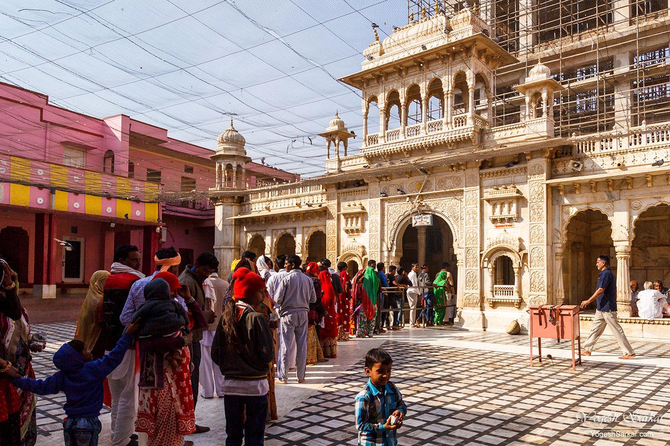 21-crowd-at-karni-mata-temple.jpg
