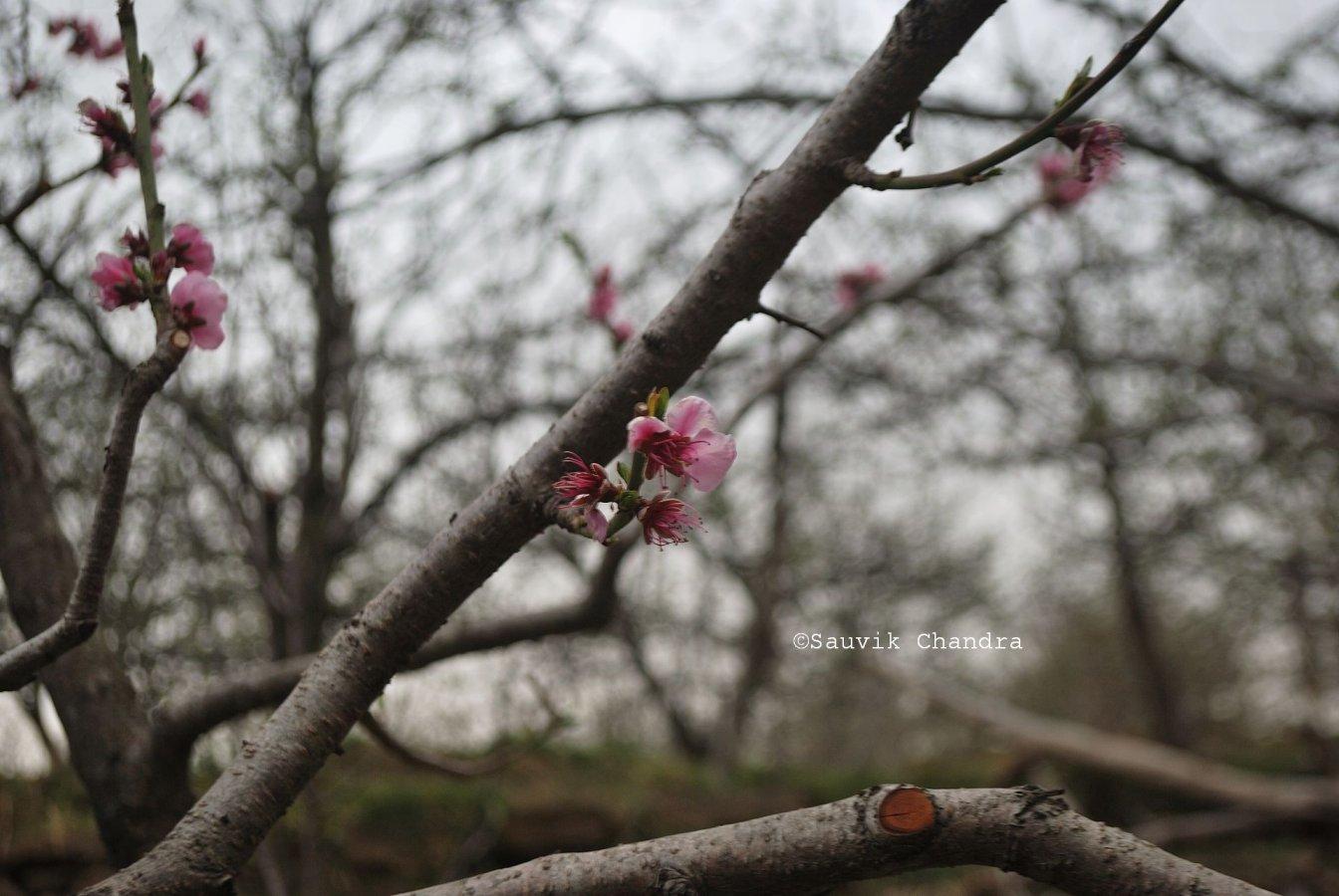 5 Tanijubbar lake_011_March 2018_edited.jpg
