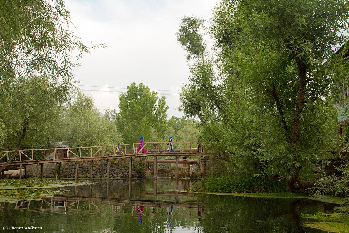 7-Bridge.jpg