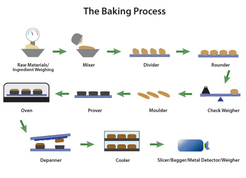 baking bread process essay Process analysis: baking banana bread other supplies outside of your ingredients, you will also need one large mixing bowl 2 large forks a spatula.