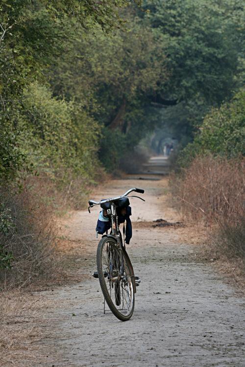 bharatpur 047.jpg