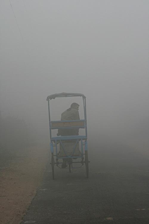 bharatpur 085.jpg