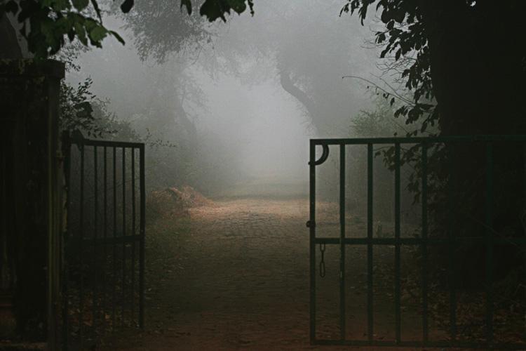bharatpur 091.jpg
