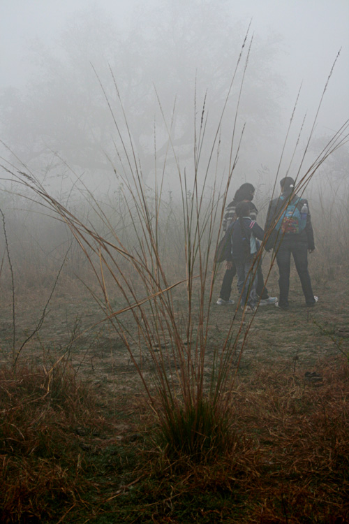 bharatpur 097.jpg