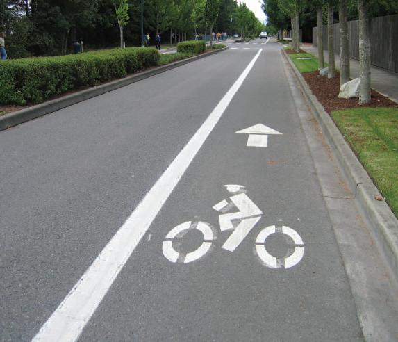 bikelanephoto.jpg