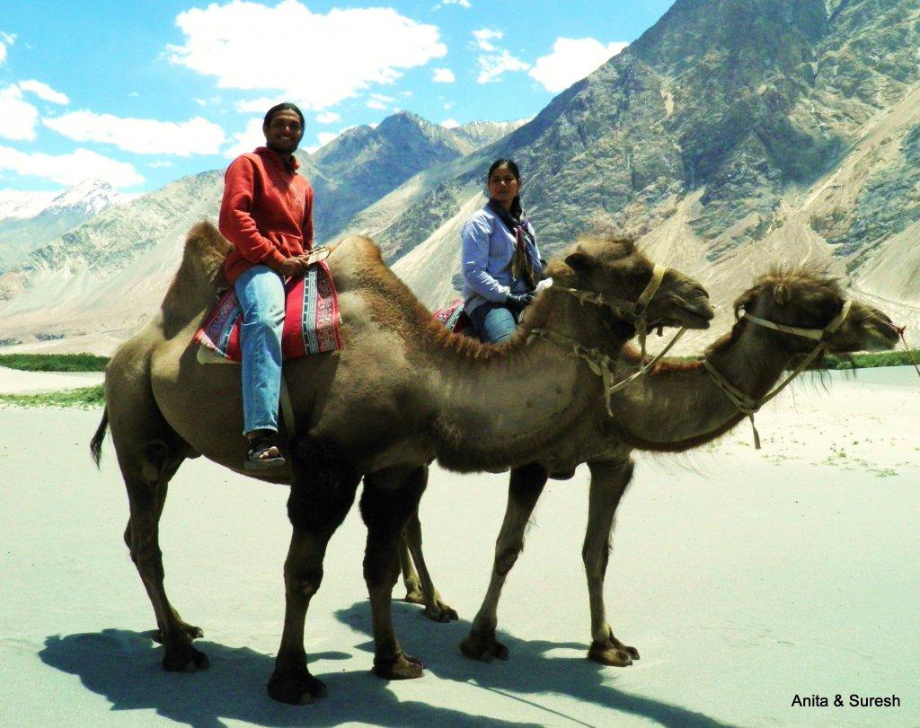 Camel safari.jpg