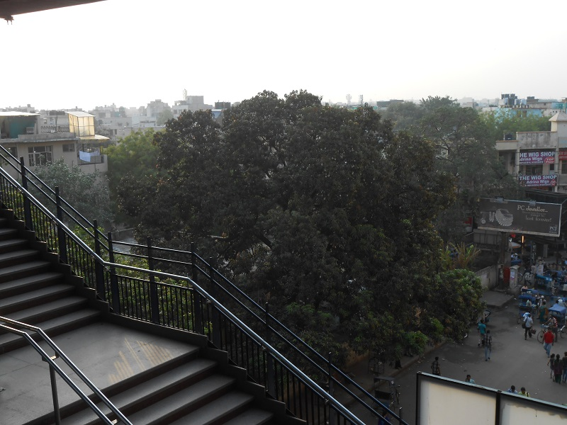 Delhi Photo 023.JPG