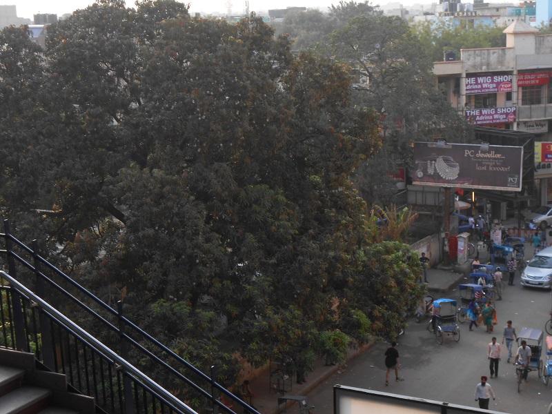 Delhi Photo 024.JPG