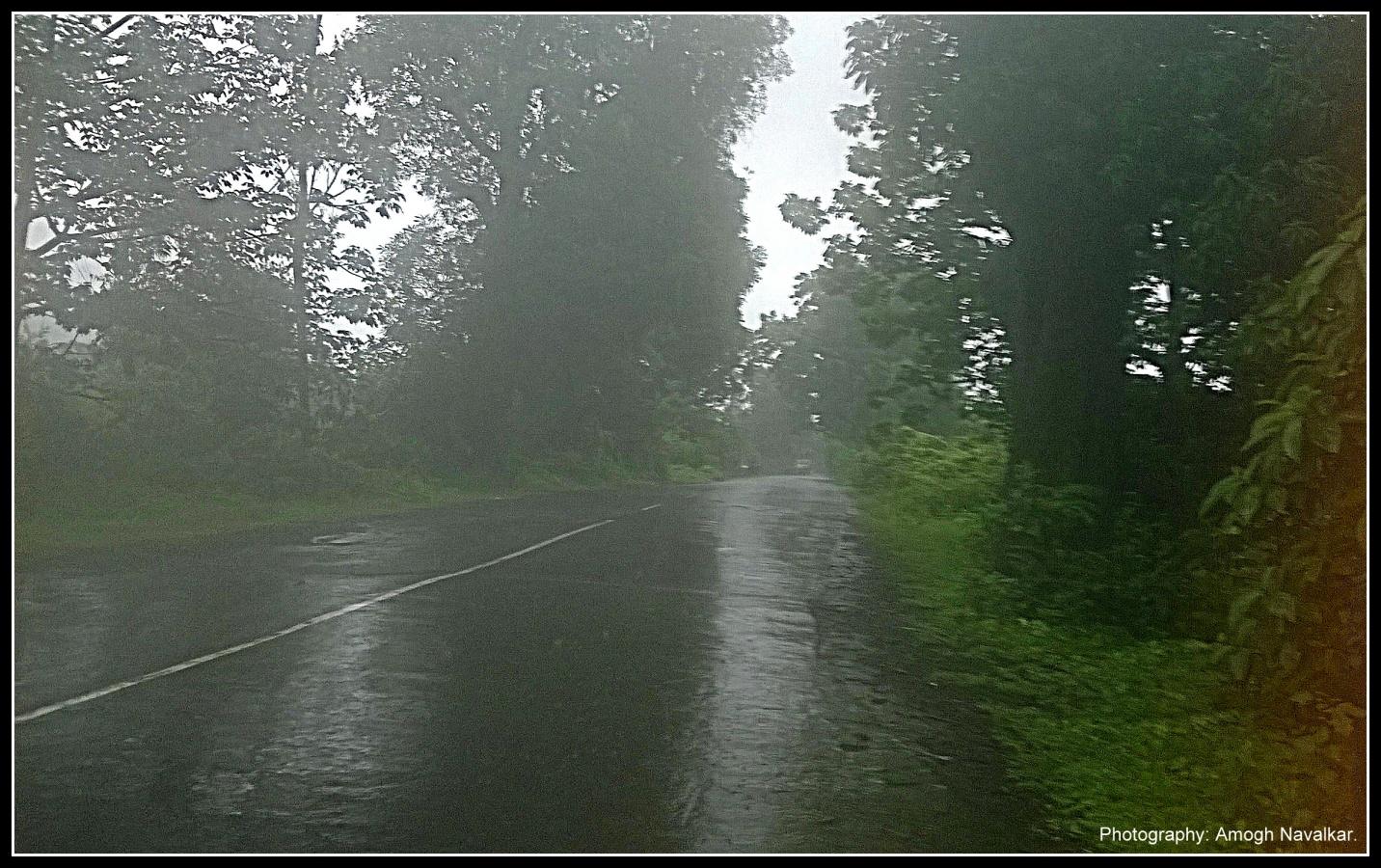 Glimpse Of Konkan In Rainy Season India Travel Forum