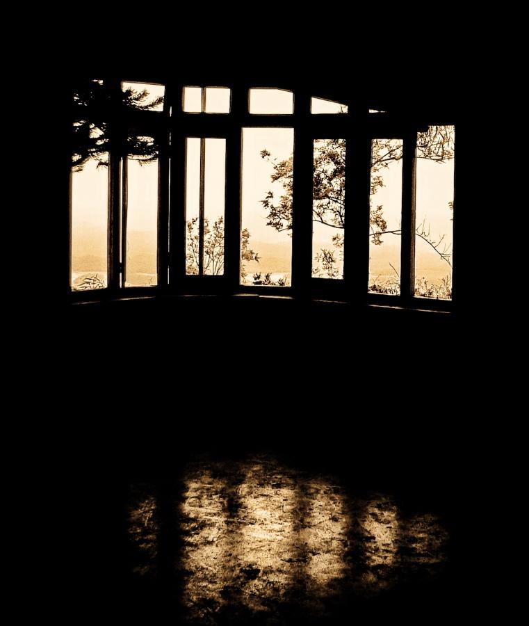 evening rays.jpg