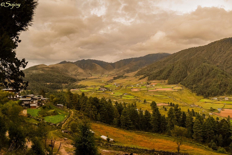 Gangtey valley.jpg