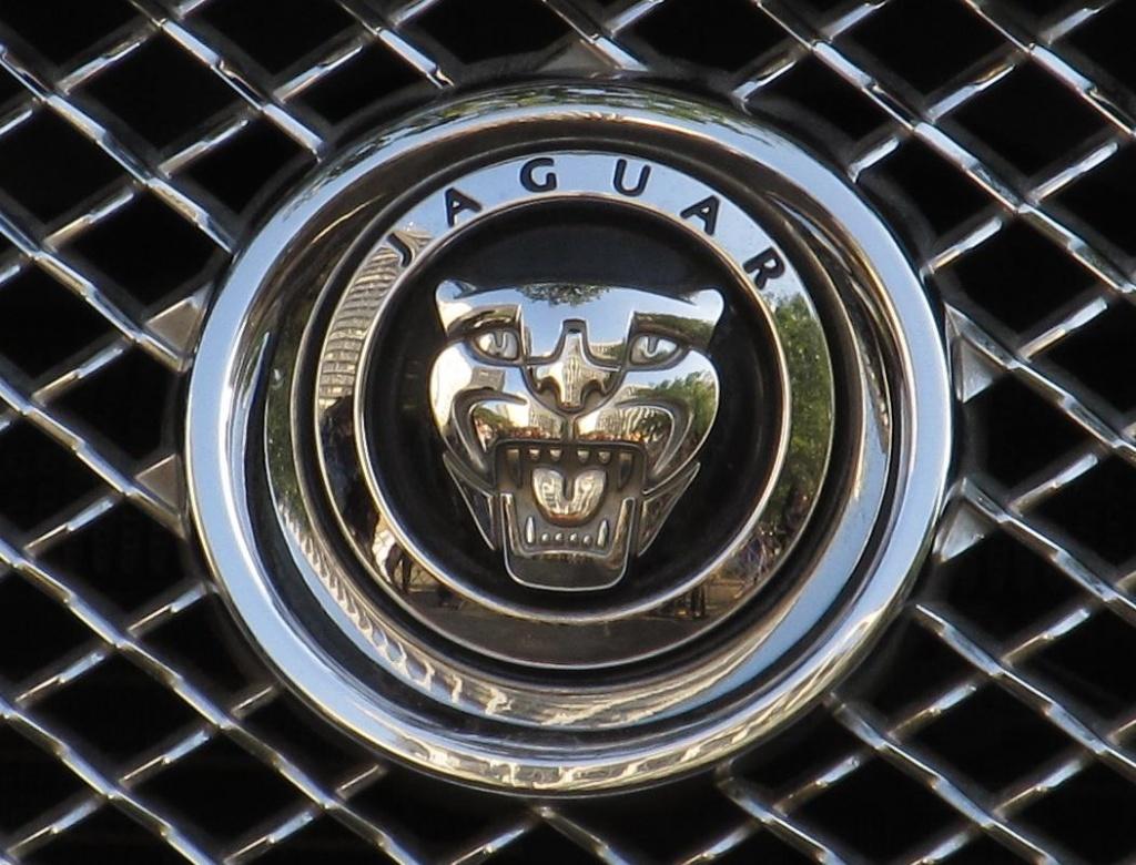 Jaguar Logo.jpg