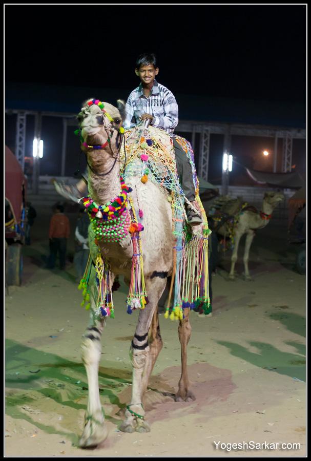 kid-on-a-camel.jpg
