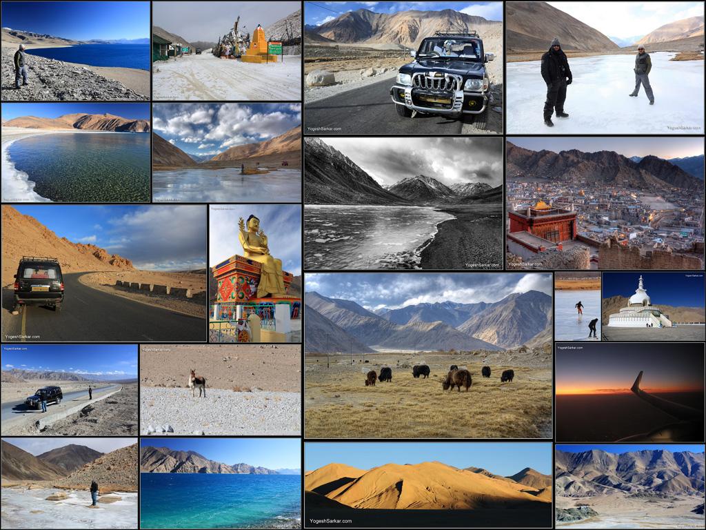 ladakh-collage.jpg