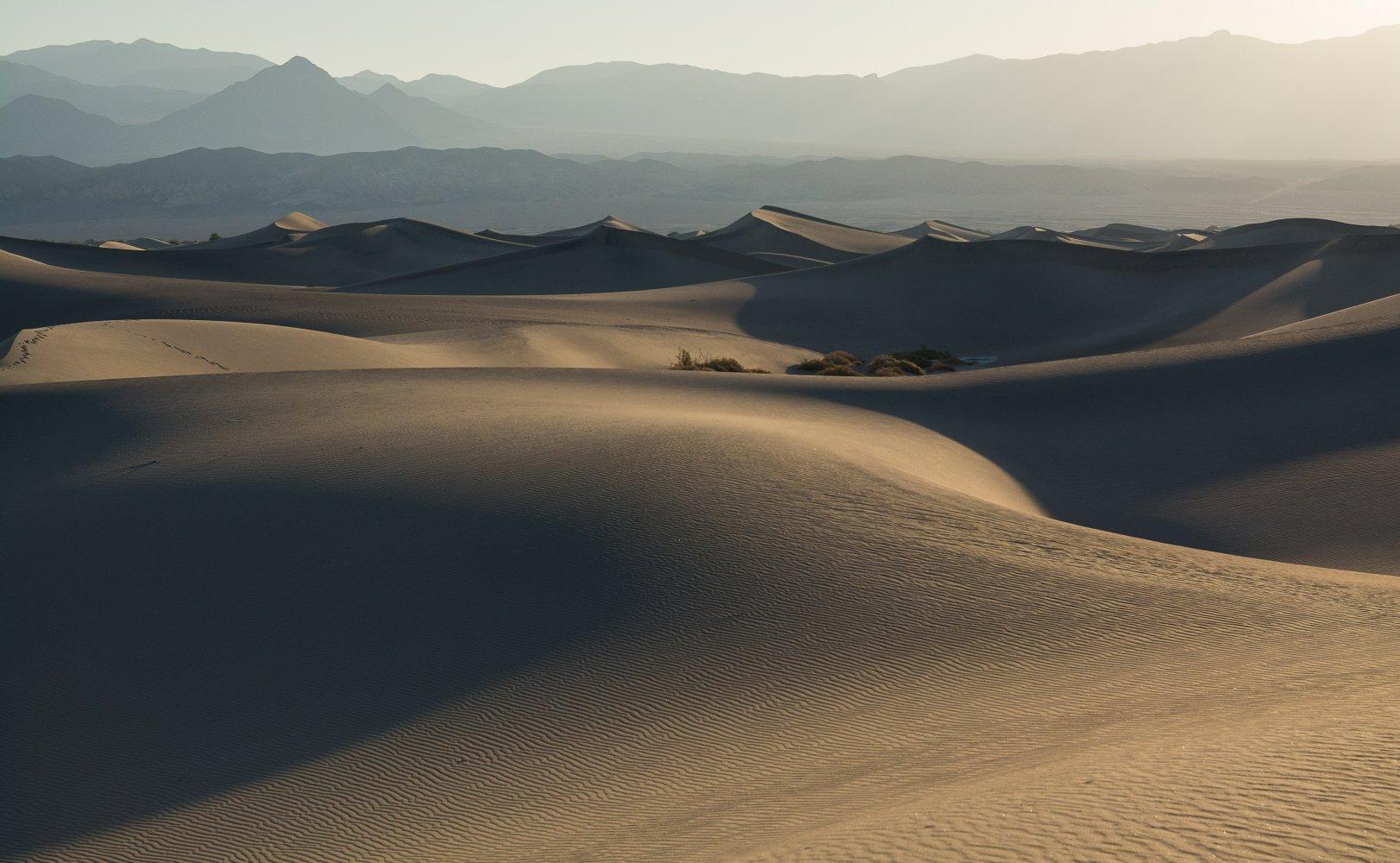mesquite sand dunes (1 of 1)-2.jpg