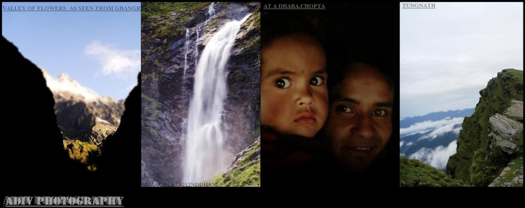 photo combine.jpg