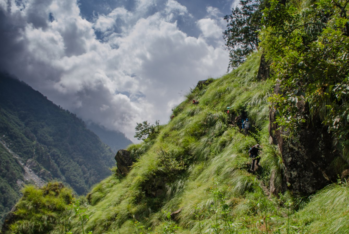 Ralam Rohit 1 (8).jpg